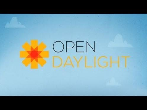 "The ""OpenDaylight"" Project"