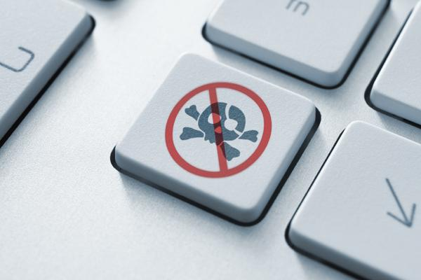 French court ruled blocking access to pirate websites